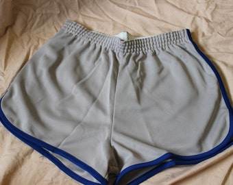 Vintage Large Broderick USA 80s grey gym shorts