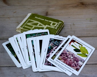 Navy Southeast Asia Survival Plant Study Cards
