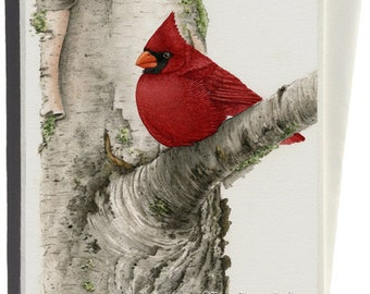Cardinal in Birch Tree Greeting Card by Tracy Lizotte