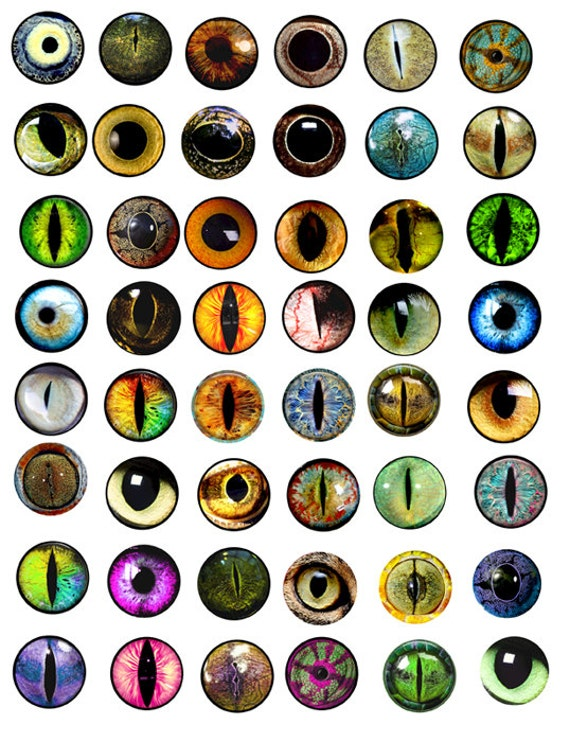 animals eyes digital collage sheet 1x1 inch circles digital download image graphics art printables for bottle cap pendants magnets pins