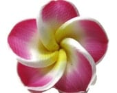 20mm Pink Polymer Clay Plumeria Flower Beads set of 4 (P01)