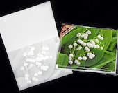 Note Cards, 5, 10 or 20 Pack Note Cards, Lily of the Valley Flowers w/ Envelopes