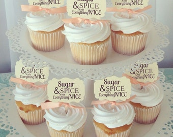 Baby Shower Cupcake Toppers, Sugar And Spice And Everything Nice