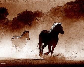 Horse Art, Texas Western, Digital Drawing, Totem Animal, Southwestern Ranch Farm, Wall Hanging, Brown Home Decor, Giclee Print, 8 x 10