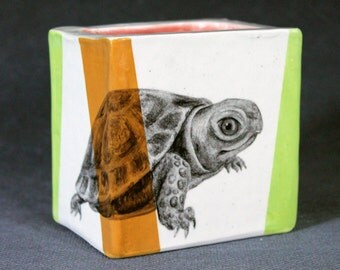 Hand Painted Baby Box Turtle Portait Pencil Box