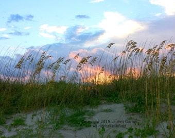Folly Dunes - Charleston Beach Sunset Sunrise Photography South Carolina Ocean Orange Yellow Pink Blue Green Sea Oats Art Print Photograph