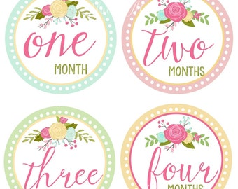 FREE GIFT, Baby Girl Monthly Stickers, Baby Month Stickers, Roses Floral Vintage  Milestone Bodysuit Newborn Shower Gift