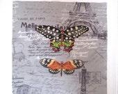 "Paris Butterfly Fabric Quilt Block 10"""
