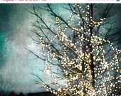 CIJ, SALE, Teal Wall Art, Blue, Gold, Fairy Lights Nature Photography Fine Art Print Large Wall Art Twinkle Lights Tree
