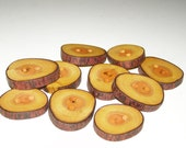 """10 Handmade apple wood Tree Branch Buttons with Bark, accessories (1,34"""" diameter x 0,24"""" thick)"""