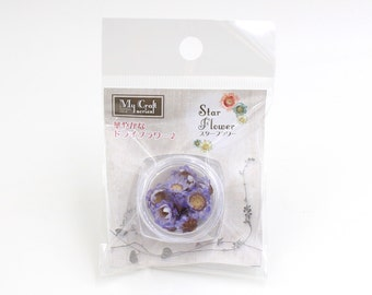 High Quality Real Dried Flower - Star Flower from Japan (Purple) use for making Resin Accessories RS-220 Approximately 10 pcs