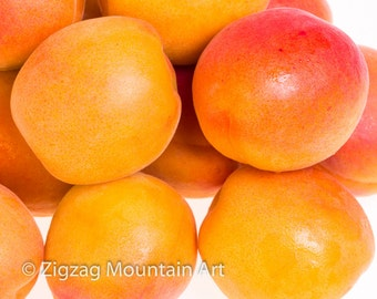 Apricot art for kitchen.  Fruit wall art or kitchen wall art from food photography.  Fine art print for kitchen decor or wall art.