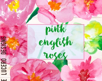Pink English Roses Watercolor Botanical Clip Art PNG overlays -  12 PNG Flowers/ leaves