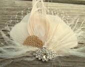 Wedding Hair Clip, Bridal Fascinator, Feather Hair Clip, Ivory Peacock Hair Clip, Rhinestone Brooch, French Netting, Burlap Wedding, Lace