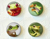 Magnets Set of 4 Frogs Buy 3 Get 1 Free  442M