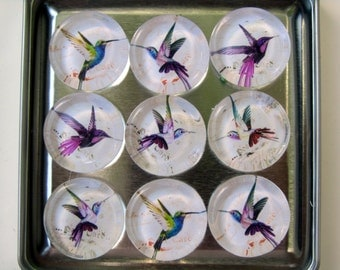 Hummingbird Refrigerator Magnets, Set of 9 Hummingbird Fridge Magnets in Storage Tin