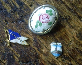 Vintage Enamel Jewelry lot -Brooch and charms