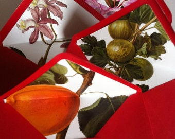 Paper envelopes, botanical stationary, red envelope, recycled envelopes, Valentines stationary