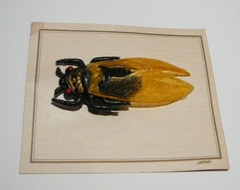 Rare Cicada Bug Brooch Pin Vintage Celluloid Japan Black orange Large
