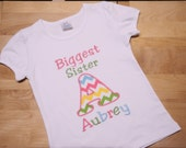 Biggest Sister, Big Sister, Middle Sister Shirt New Baby Announcement Personalized Sibling Shirt Pink, Green, Yellow, Aqua and White Chevron