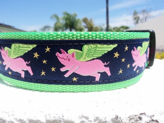 "Large Dog Collar, 1.5"" When Pigs Fly, Quick Release or Martingale collar, - detailed info within - no 1"" width"