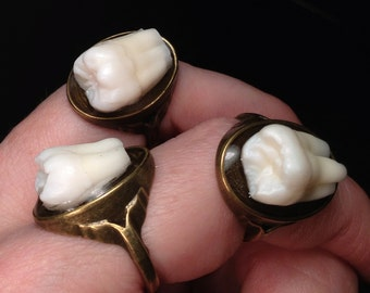 Tooth Fairy Series: Real Human Molar Antique Brass Size 6 Ring