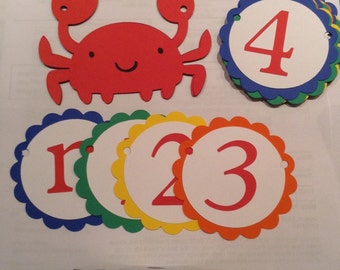 First Birthday Party Banner, Nautical, crab, ocean theme, beach party, Picture Banner, happy birthday, first birthday, photo banner,