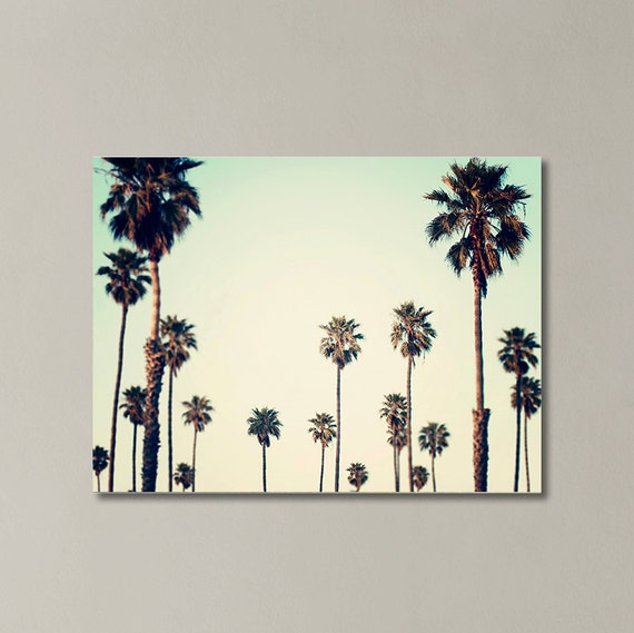 palm tree canvas california wall art palm tree photography. Black Bedroom Furniture Sets. Home Design Ideas