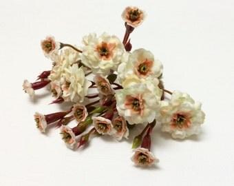 Primroses - TWO Sets Artificial Pom Pom Roses - Cream with Peach - SMALL FLOWERS