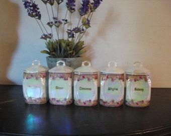 Lusterware 5 Spice Jars Pretty Rose Motif French Shabby Cottage Farmhouse Decor