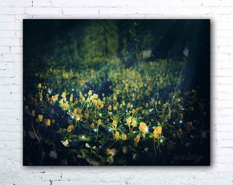 The Magic and the Moonlight - fine art photograph, dark mysterious forest photography, botanical print, flower photography, woodland decor
