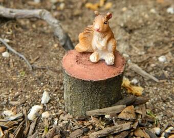 Fairy Garden Accessories Squirrel on tree stump Miniature squirrel for fairy garden, terrarium or tabletop garden Woodland pet