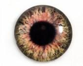 Brown Glass Eye Cabochon 25mm Steampunk Eye for Pendant Jewelry Making or Taxidermy Doll Eyeball Flatback Circle