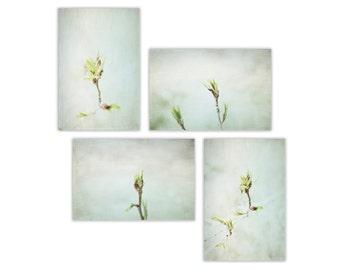 Nature Photography, dreamy nature decor, rustic wall art, spring, nature decor, nature wall art  - Set of 4 - Fine Art Photographs