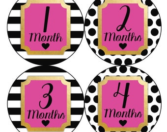 1st Year Baby Month Sticker, PLUS Just Born, Baby Girl Milestone Stickers, Monthly Bodysuit Sticker, Dots White Hot Pink Gold Black 160G