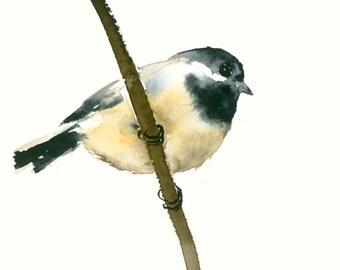 Bird Art Card Blank Greeting Card Chicadee