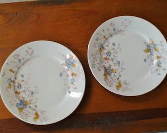 Antique Porcelain Dessert or Salad Plate Pair, Charming Floral Design, Blue, Goldenrod