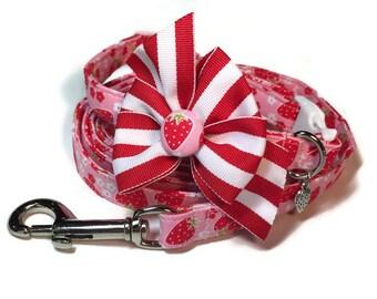 Berry Blossom Dog Collar and Leash Set