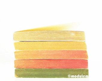 An Afternoon in Central Park - Print of vintage books, green, yellow, red, orange, beige, ochre, orange, autumn, 8x8, 8x10