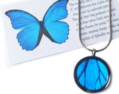 Real Butterfly Wing Necklace Pendant - Blue, Colorful, Gift, Unique, For Her, Birthday, Anniversary, Present, Taxidermy, Insects, Bugs