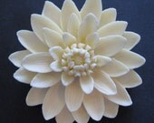 Molded Celluloid Brooch - Flower Brooch - Floral Brooch