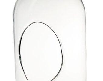 """8"""" Glass Capsule Plant Orb/Terrarium"""