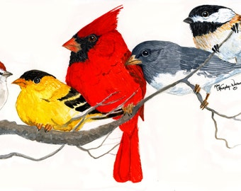 Songbirds Note Cards. Five different birds on cards