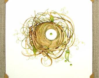 pea pod vine nest reprint spring summer mini reproduction unique art archival gift garden