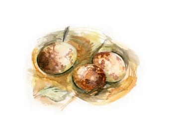 Watercolor Bird Nest, Bird Nest Print