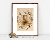 PINK OCTOPUS Print - digital download - printable antique sea illustration for framing and image transfer to totes, pillows, prints etc.