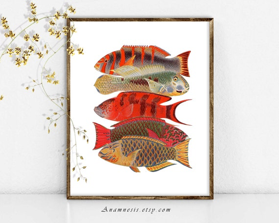 TROPICAL FISH Art Print - Printable Instant Download - sea life illustration for framing, totes, pillows, t-shirts - beach house wall decor