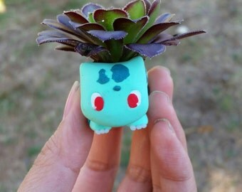 Kawaii pokemon succulent and small planter, bulbasaur, charmander, squirtle