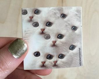 Cat Eyes Sticker- Weatherproof version