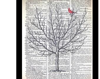 Red Cardinal Bird in Tree, Cardinal Bird Prints,Mixed Media art print on 8x10, Vintage Dictionary page, Dictionary art, Dictionary print